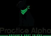 Practice Alpha